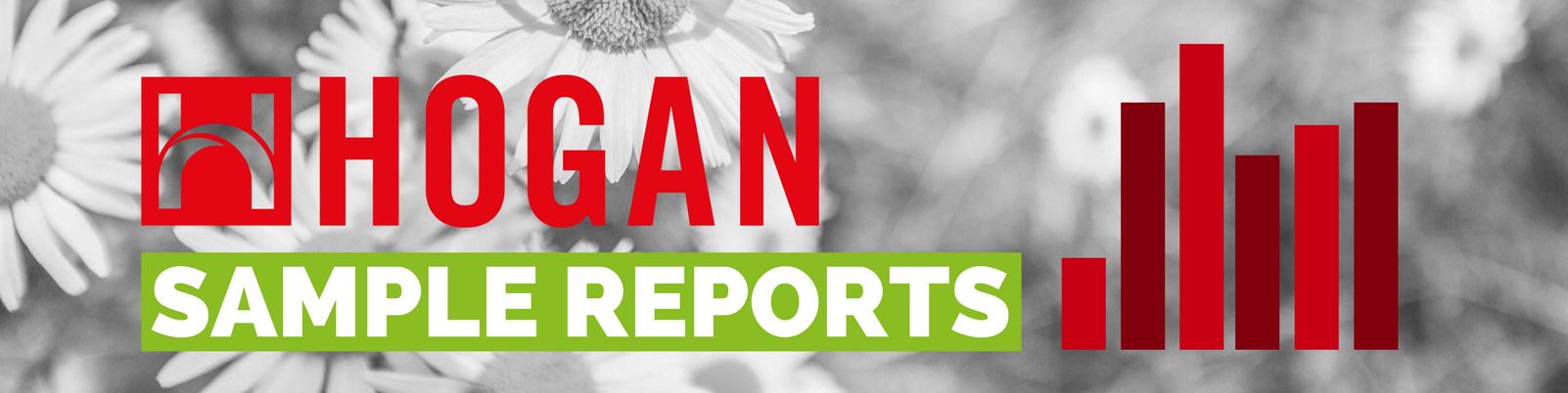 2hogan 360 sample report