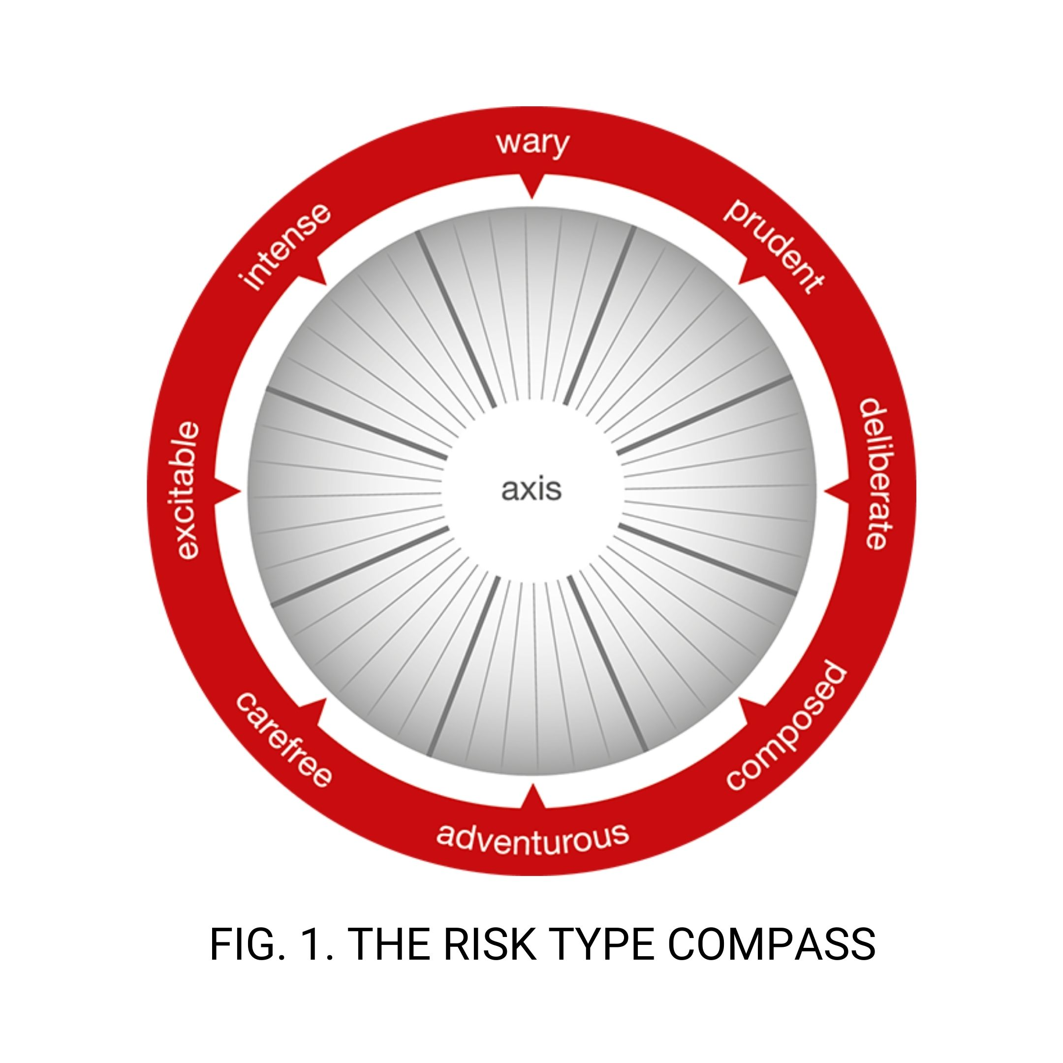 Risk Type Compass